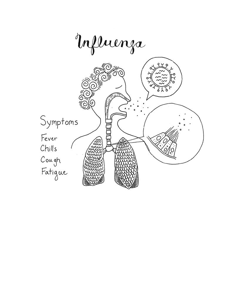 Flu figure1 draft1