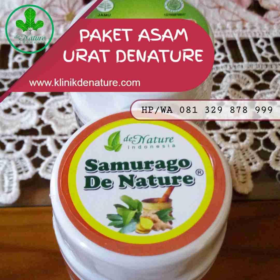 pengobatan herbal asam urat
