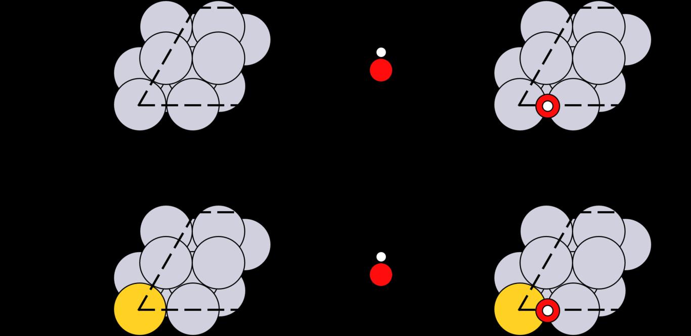 Fig1 v2