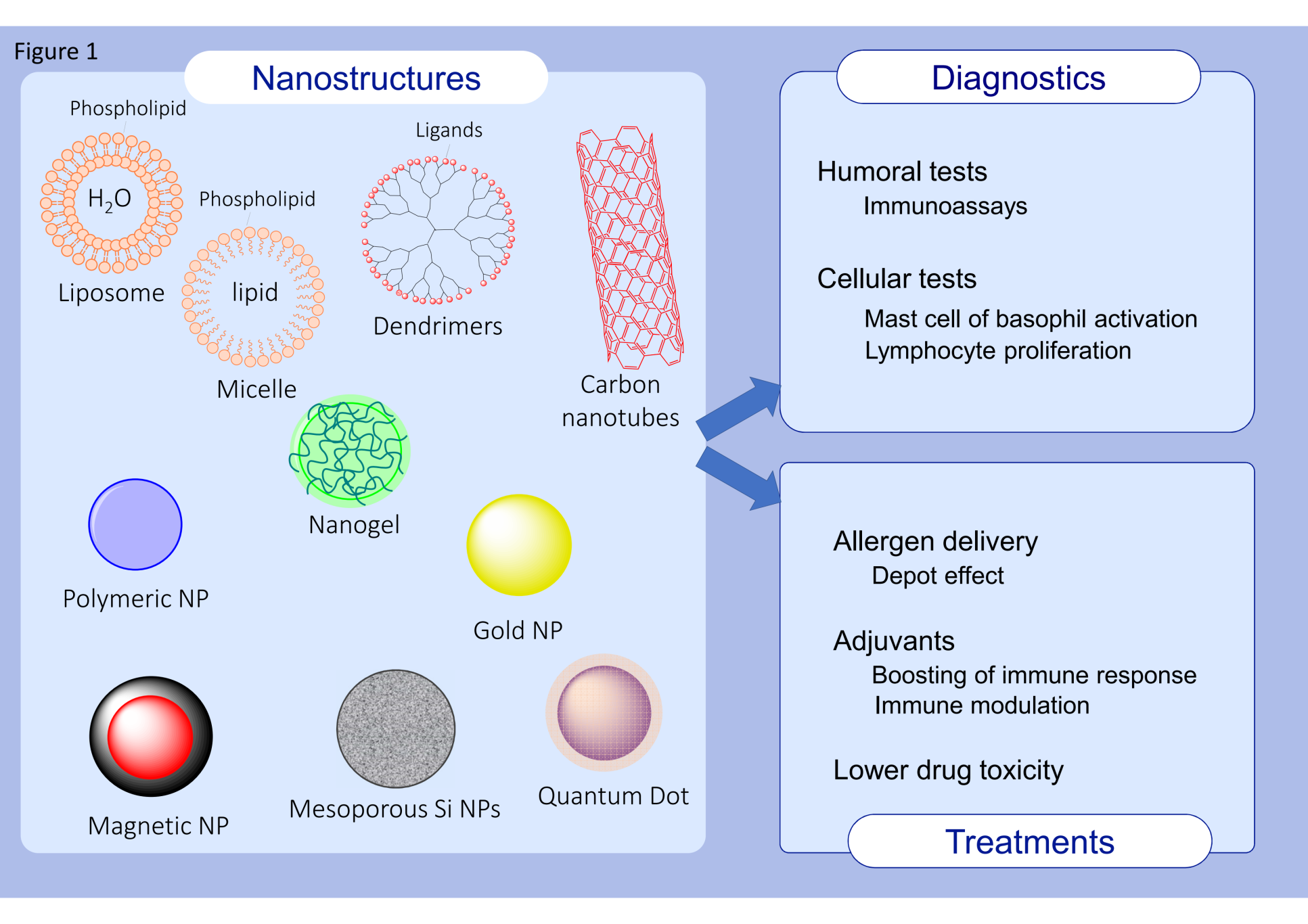 Figures nanotechology applications allergygatemplate 30 06