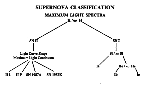 Sne spec types