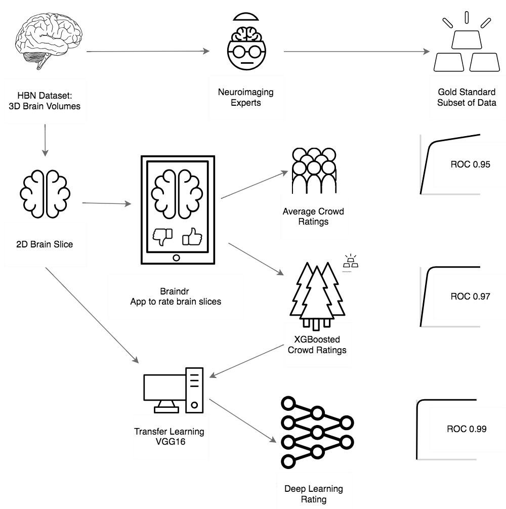 Braindroverview