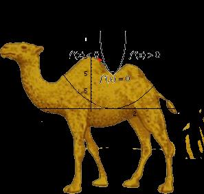 Camel alone3